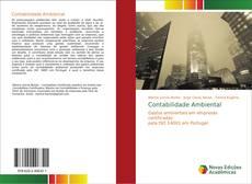 Bookcover of Contabilidade Ambiental