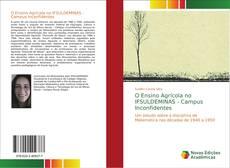 Bookcover of O Ensino Agrícola no IFSULDEMINAS - Campus Inconfidentes