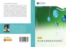 Bookcover of 部分聚合物制备及性质研究