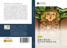 Bookcover of 新疆少数民族 社区保护地现状分析