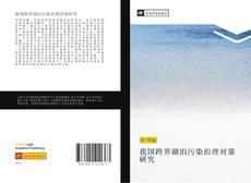 Bookcover of 我国跨界湖泊污染治理对策研究