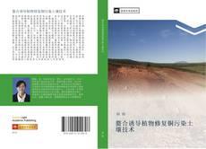 Borítókép a  螯合诱导植物修复铜污染土壤技术 - hoz