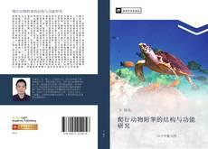 Buchcover von 爬行动物附睾的结构与功能研究