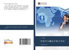 Bookcover of 经济学小概念中的大学问