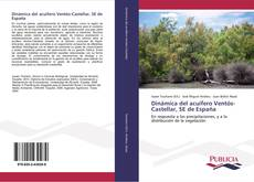 Dinámica del acuífero Ventós-Castellar, SE de España的封面
