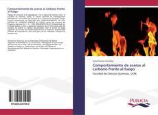 Portada del libro de Comportamiento de aceros al carbono frente al fuego
