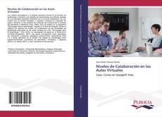Niveles de Colaboración en las Aulas Virtuales kitap kapağı