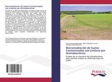 Biorremediación de Suelos Contaminados con Lindano por Actinobacterias kitap kapağı