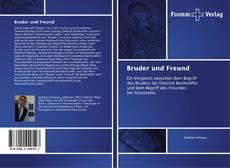Buchcover von Bruder und Freund