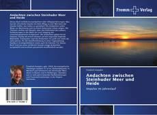Andachten zwischen Steinhuder Meer und Heide的封面