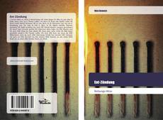 Bookcover of Ent-Zündung
