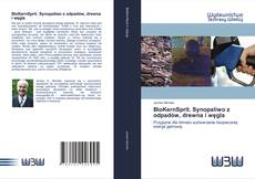 Обложка BioKernSprit. Synopaliwo z odpadów, drewna i węgla