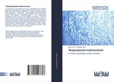 Buchcover von Rozpraszanie hadronronów