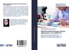 Bookcover of Sygnał pozakomórkowy Kinaza regulowana 1/2 p (ERK1/2)