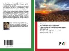 Analisi e Valutazione del Segretariato Sociale nel Comune di Carrara的封面