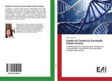 Обложка Studio di Corteccia Surrenale Fetale Umana