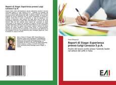 Bookcover of Report di Stage: Esperienza presso Luigi Lavazza S.p.A.