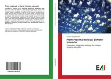 From regional to local climate scenario kitap kapağı