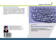 Bookcover of Магистерская диссертация