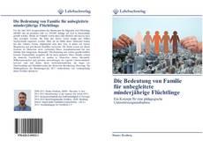 Portada del libro de Die Bedeutung von Familie für unbegleitete minderjährige Flüchtlinge
