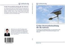 Bookcover of Grüne Strassenbeleuchtung für die Schweiz
