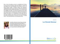 Couverture de Le Grand Amour