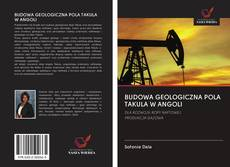 Copertina di BUDOWA GEOLOGICZNA POLA TAKULA W ANGOLI