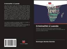Capa do livro de Criminalité à Luanda