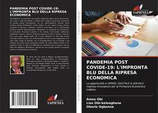 Portada del libro de PANDEMIA POST COVIDE-19: L'IMPRONTA BLU DELLA RIPRESA ECONOMICA