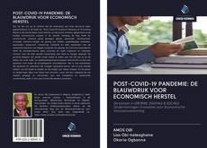 Bookcover of POST-COVID-19 PANDEMIE: DE BLAUWDRUK VOOR ECONOMISCH HERSTEL