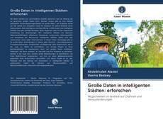 Buchcover von Große Daten in intelligenten Städten: erforschen