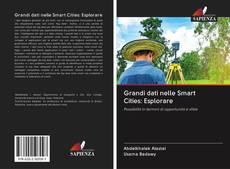Bookcover of Grandi dati nelle Smart Cities: Esplorare