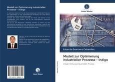 Copertina di Modell zur Optimierung industrieller Prozesse - Indigo