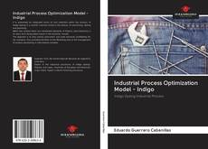 Industrial Process Optimization Model - Indigo kitap kapağı