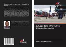 Sviluppo delle infrastrutture di trasporto pubblico的封面
