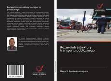 Bookcover of Rozwój infrastruktury transportu publicznego