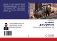 Bookcover of Муфлоны Азербайджана (Artiodactyla: Ovis)