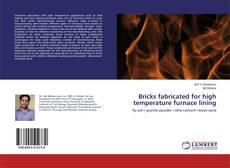 Bookcover of Bricks fabricated for high temperature furnace lining