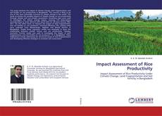 Buchcover von Impact Assessment of Rice Productivity