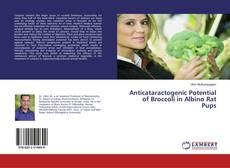 Bookcover of Anticataractogenic Potential of Broccoli in Albino Rat Pups