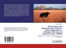 Portada del libro de Dimensions and Determinants of Rural–Urban Migration in Ethiopia: The Case of Hossana Town, SNNPR