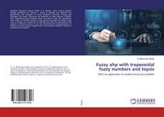 Fuzzy ahp with trapezoidal fuzzy numbers and topsis kitap kapağı