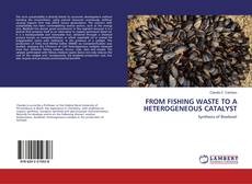 Обложка FROM FISHING WASTE TO A HETEROGENEOUS CATALYST