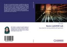 Basics LabVIEW Lab的封面