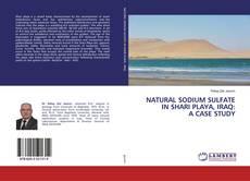 Capa do livro de NATURAL SODIUM SULFATE IN SHARI PLAYA, IRAQ: A CASE STUDY