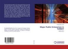 Bookcover of Major Public Enterprises in TURKEY