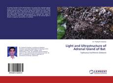 Buchcover von Light and Ultrastructure of Adrenal Gland of Bat