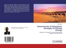 Determinants of Adaptation Strategies to Climate Change kitap kapağı