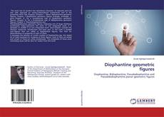 Bookcover of Diophantine geometric figures