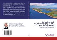 Bookcover of Palynology and palynostratigraphy of sub- and surface Triassic